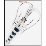 Diamond Blue Sapphire Prawn Brooch/Pin 18K White Gold Jewelry [I_004]